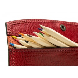 Leather Pen holder with snap closure
